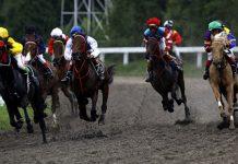 arena pacuan kuda yogyakarta dewagoal