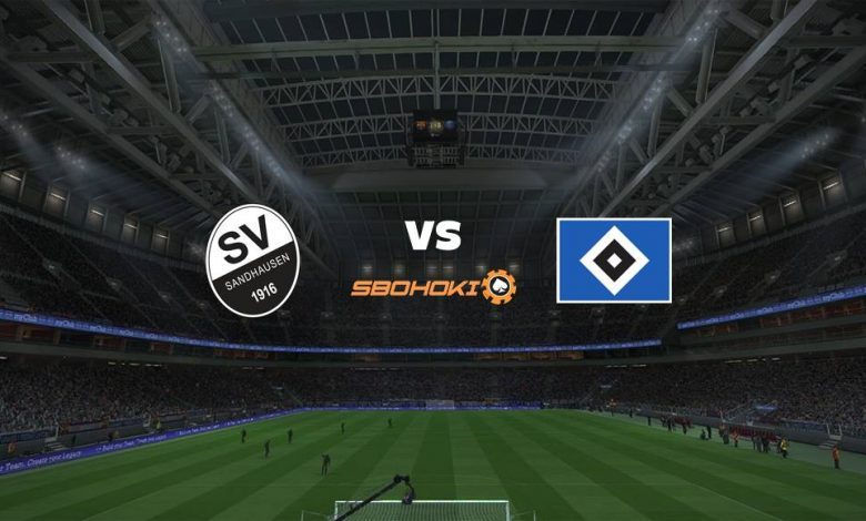 Live Streaming SV Sandhausen vs Hamburg SV 22 April 2021 1