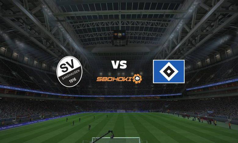 Live Streaming SV Sandhausen vs Hamburg SV (PPD) 16 April 2021 1